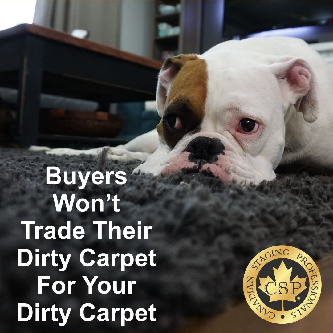 buyers want clean carpets or no carpets